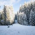 Farewell Bend Sno-Park.- Best Winter Adventure Destinations