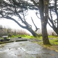 Typical campsite in Kalaloch Campground.- Best Year-round Campgrounds in Washington