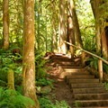Stairs along the Horseshoe Bend Trail.- Exploring Mount Baker, Washington