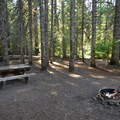 One of four sites with picnic tables at Barlow Crossing Campground.- Escape to Mount Hood's 17 Best Campgrounds