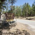 San Gorgonio Campground.- Barton Flats Recreation Area