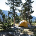 Campsite at Longs Peak Campground.- Rocky Mountain National Park