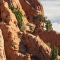 Garden of the Gods.- Denver's Best Day Hikes