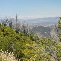 Views from the Silvercrest Trail.- 10 Must-Do Hikes in San Diego