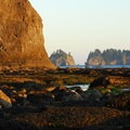 Hole-in-the-wall with James Island and Little James Island in the distance. Olympic National Park.- The Pacific Northwest