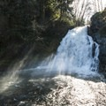 Youngs River Falls.- Saving Oregon's State Forests