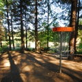 Disc golf course at Dairy Creek Camp East and West.- L.L. Stub Stewart State Park
