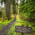 Sams River Loop Trail.- America's Best National Parks for Fall Foliage and Wildlife