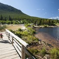 Lily Lake Loop Trail.- Gorgeous Colorado Lakes for Summer Adventure
