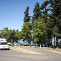 RV sites at Salt Creek Recreation Area.- Best Year-round Campgrounds in Washington