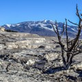 Mammoth Hot Springs in Yellowstone National Park.- Yellowstone National Park