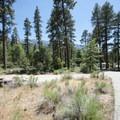Barton Flats Campground.- Barton Flats Recreation Area