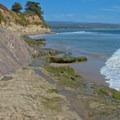 Pleasure Point shoreline.- Pleasure Point