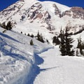 View of Mount Rainier (14,411 ft) from the Edith Creek Basin Trail.- 15 National Parks To Visit This Winter