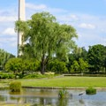 The Constitution Gardens with the Washington Monument in the distance.- Celebrate Your Independence