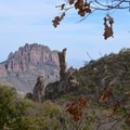 Boot Canyon Trail in Big Bend National Park.- Ecosystems Divided: The Border Wall's Devastating Environmental Impacts