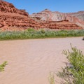 The San Juan River waters lush riparian zones amid vast desert.- Bears Ears National Monument