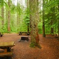 A group site in Lower Falls Campground.- A 3-day Itinerary for the Gifford Pinchot National Forest
