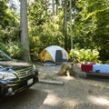 Typical campsite in the tent/car camping area near Tongue Point at Salt Creek Recreation Area Campground.- A Complete Guide to Camping in Olympic National Park