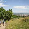 View northwest back toward Boulder from the Chautauqua Trail.- 15 Family-Friendly Hikes Near Boulder, Colorado