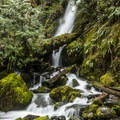 Merriman Falls.- Olympic Peninsula Waterfall Road Trip