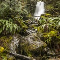 Merriman Falls.- Washington's Best Winter Waterfalls