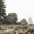 Ozette Triangle Loop Trail: Rocky shoreline between Cape Alava and Sand Point.- 16 Best Hikes on the Washington Coast