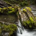 Merriman Falls.- Winter in Olympic National Park