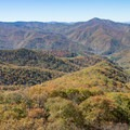 The view from the Frying Pan Lookout Tower.- A Guide to Leaf-peeping Weekends in the Blue Ridge Mountains