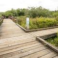 Mercer Slough Nature Park along the Heritage Loop Trail.- Seattle's 16 Best Kid-Friendly Adventures