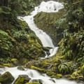 Bunch Falls.- Olympic Peninsula Waterfall Road Trip