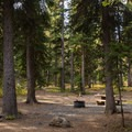 Forested campsites at Strawberry Campground.- A Guide to Camping in Oregon