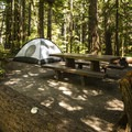 Typical campsite at Heart O' the Hills Campground.- The Ultimate Washington National Parks Road Trip