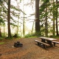 Typical campsite in Mora Campground.- Best Year-round Campgrounds in Washington