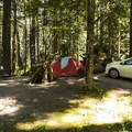 Typical campsite at Heart O' the Hills Campground.- A Complete Guide to Camping in Olympic National Park