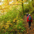 Cape Horn Upper Trail.- Best Hikes for Fall Colors in Washington