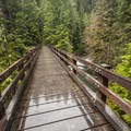Bridge over Graves Creek on the Enchanted Valley Trail.- 10 Amazing Day Hikes in Olympic National Park