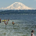 Mount Rainier (14,411 ft) and Lake Washington from O. O. Denny Park.- Sex, Drugs, and Swimming Holes
