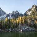 Western larch (Larix occidentalis) at Colchuck Lake.- Best Hikes for Fall Colors in Washington