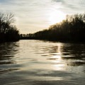 Late day outing on Bayou Macon.- Paddler's Guide to Louisiana Swamps, Lakes + Bayous