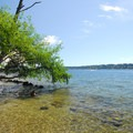 Lake Washington shoreline at Saint Edward State Park.- State Parks You Can't Miss