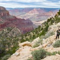 Descending the switchbacks on Hermit Trail.- Grand Canyon National Park