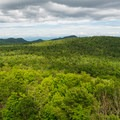 View from the Belfry Tower.- Adirondack Fire Tower Hikes