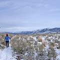 Many Yellowstone trails are great for skis or snowshoes.- The Wild Solitude of Winter in Yellowstone