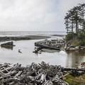 Kalaloch Creek estuary.- 5 Great Winter Lodging Options on the Olympic Peninsula
