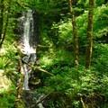 35-foot Bridge Creek Falls.- Saving Oregon's State Forests
