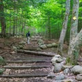 Wide, well-maintained trail on West Rattlesnake Mountain.- 20 Must-Do Hikes in New Hampshire