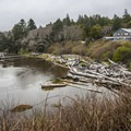 Kalaloch Lodge and Kalaloch Creek.- Winter in Olympic National Park