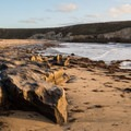 Rock formations at Bonny Doon Beach. - OP Adventure Review: December 2-10, 2015