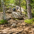 Heading up the Mount Major Loop above the first view.- 10 Great Hikes Near Concord, New Hampshire